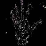 Zodiac-Alchemy Brnading logos 2