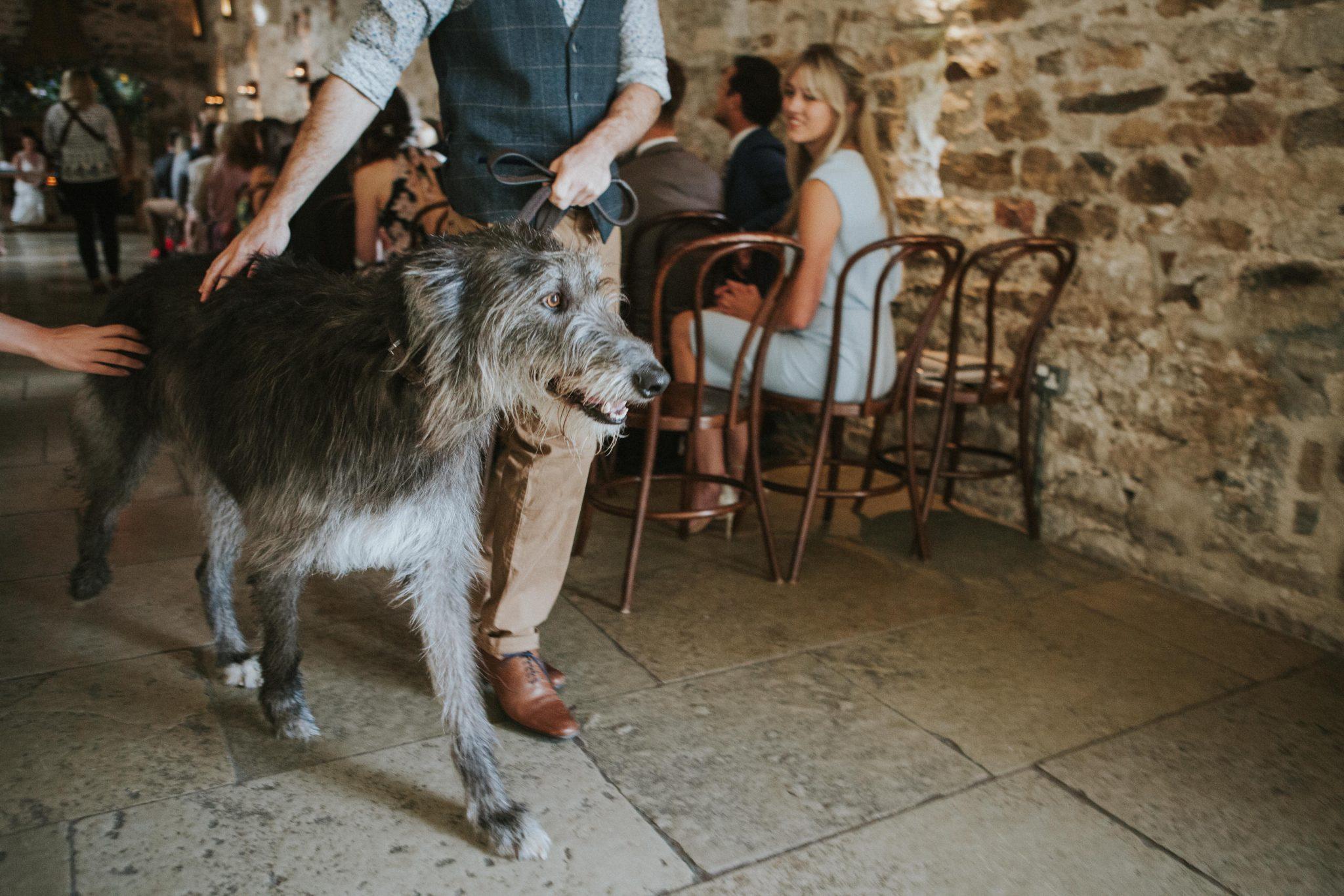 Healey Barn Wedding - Wedding Photographers Newcastle (19 of 84)