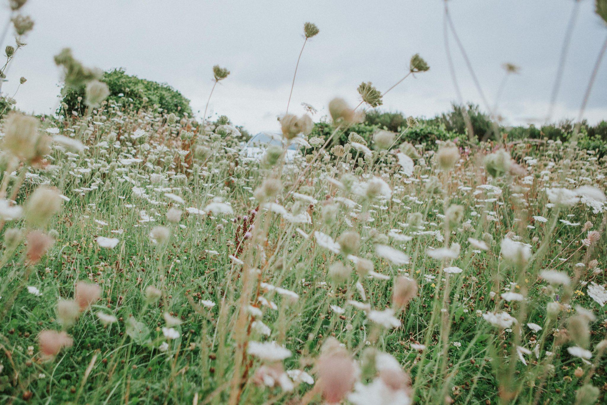 Healey Barn Wedding - Wedding Photographers Newcastle (48 of 84)
